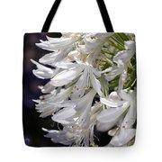 Flower-agapanthus-white-flora Tote Bag