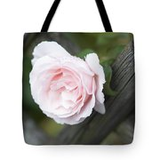 Flower Among The Fence Tote Bag