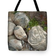 Flower And Rocks Tote Bag