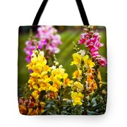 Flower - Antirrhinum - Grace Tote Bag by Mike Savad