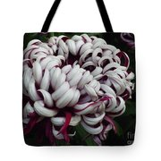Flower Basket With Purple Texture Tote Bag