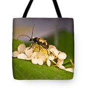 Flower Beetle Tote Bag