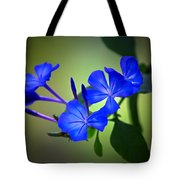 Flower Burst Tote Bag