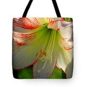 Flower Child Amaryllis Flower Art Tote Bag