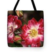 Flower-cream-pink-red-rose Tote Bag