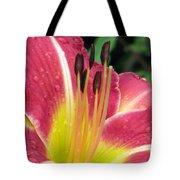 Flower Garden 02 Tote Bag
