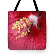 Flower Garden 17 Tote Bag
