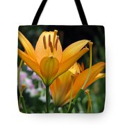 Flower Garden 22 Tote Bag