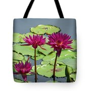 Flower Garden 57 Tote Bag