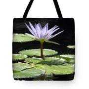 Flower Garden 62 Tote Bag