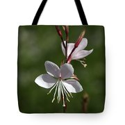 Flower-gaura-white  Tote Bag