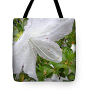 Flower Laced With Rain Drops Tote Bag