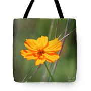 Flower Lit By The Sun's Rays Tote Bag