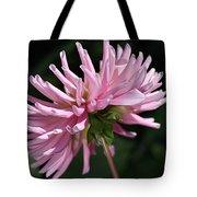 Flower-pink Dahlia-bloom Tote Bag
