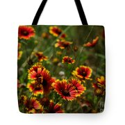 Texas Indian Blanket -  Luther Fine Art Tote Bag
