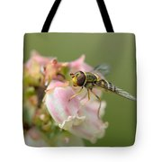 Flowerfly On Blueberry Blossom Tote Bag
