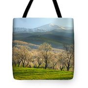 Flowering Almond At The Mountains Tote Bag