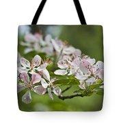 Flowering Crabapple 2 Tote Bag