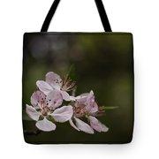 Flowering Crabapple Tote Bag