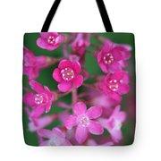 Flowering Currant Tote Bag