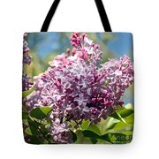 Flowering Lliac Bush Tote Bag