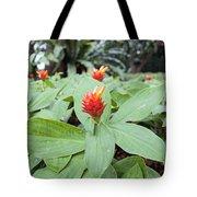 Flowering Red Ginger Plant Tote Bag