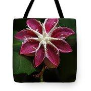 Flowers 12 Tote Bag
