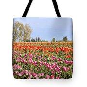 Flowers Blooming In Tulip Field In Springtime Tote Bag