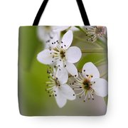 Flowers - Blossoms Tote Bag