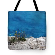 Flowers By The Blue Tote Bag