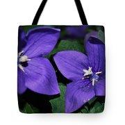 Flowers Conversation Tote Bag