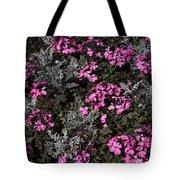 Flowers Dallas Arboretum V16 Tote Bag