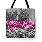 Flowers Dallas Arboretum V17 Tote Bag