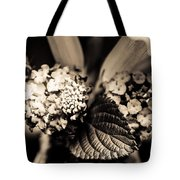 Flowers In A Jar Tote Bag by Marco Oliveira