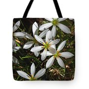 Flowers In The Pot Tote Bag
