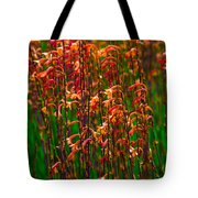 Flowers Of Fire Tote Bag