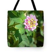 Flowers Of Pink And Orange Tote Bag