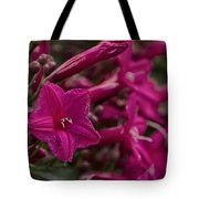 Flowers-waimea Arboretum  Tote Bag