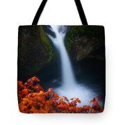 Flowing Into Fall Tote Bag
