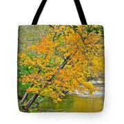 Flowing River Leaning Tree Tote Bag