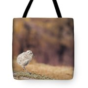 Fluffball Walking Tote Bag by Anne Gilbert