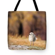 Fluffball Watching Tote Bag by Anne Gilbert