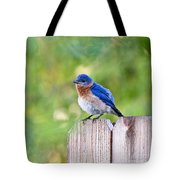 Fluffed Up Tote Bag