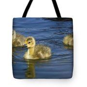 Fluffy Floaters  Tote Bag