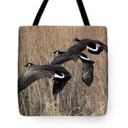 Fluid Migration Tote Bag