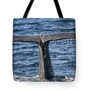 Flukes Of A Sperm Whale 2 Tote Bag