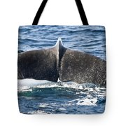 Flukes Of A Sperm Whale Tote Bag