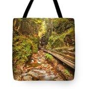 Flume Gorge Landscape Tote Bag