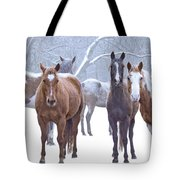 Flurries Tote Bag
