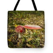 Fly Amanita Tote Bag